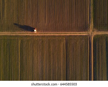 Aerial view of tractor in cultivated corn maize crop field, agricultural machinery with crop sprayer spraying pesticide chemical on plantation