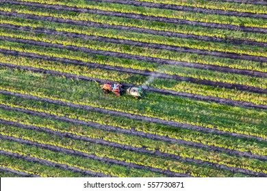 Aerial View of A Tractor in a Field, Napa, California, USA