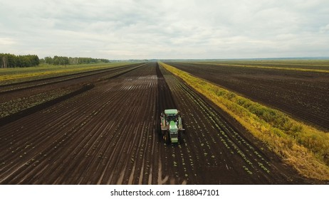 Aerial view Tractor Hilling Potatoes with disc hiller. Farmer in tractor preparing land with seedbed cultivator in farmlands. Tractor plows a field. Agricultural work in processing, cultivation of