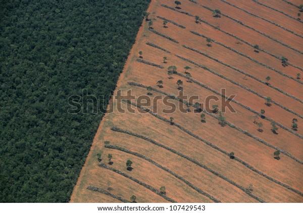 Aerial view of tropical deforestation, Mato Grosso do Sul, Pantanal, Brazil