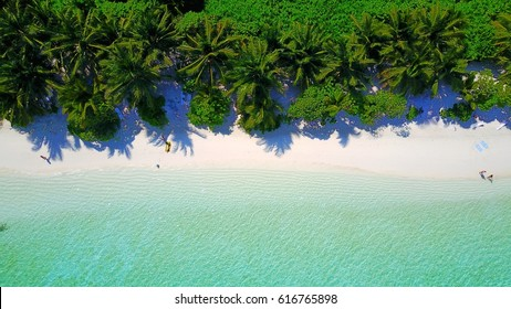 Aerial view of a tropical white sand beach palm trees and blue turquoise sea water