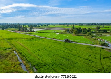 Aerial view of truck and beautiful green rice field and sky with white clouds.