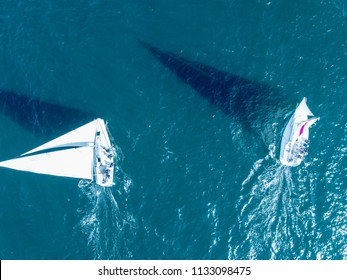 Aerial view of two yachts on the sea surface.