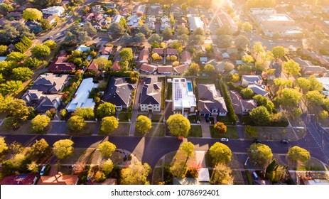 Aerial view of a typical leafy suburb in Australia