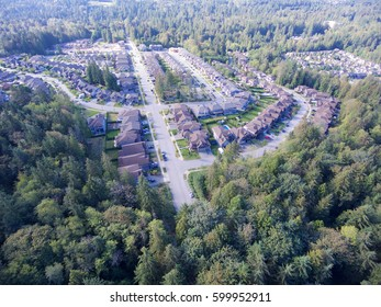 Aerial view of upscale suburban neighbourhood surrounded by forest
