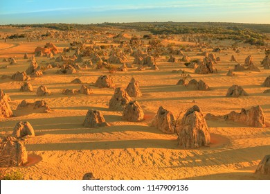 Aerial view of the valley of the Pinnacles Desert of Nambung National Park at sunset. These giant limestone formations are the major tourist attraction of Western Australia.