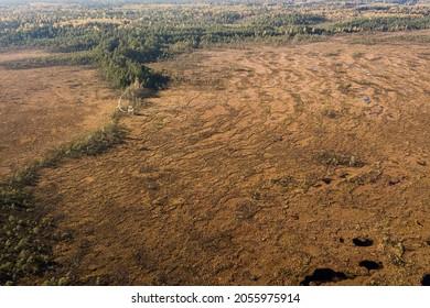 Aerial view of Vasenieku marsh with ponds, pines and wooden footbridge, Latvia.
