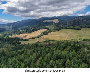 Aerial view of the verdant hills with trees in Napa Valley during summer season. Napa County, in California's Wine Country, part of the North Bay region of the San Francisco Bay Area.