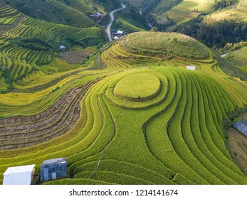 Aerial view of Vietnam landscapes. Rice fields on terraced of Mu Cang Chai, YenBai. Royalty high-quality free stock image of beautiful terrace rice fields prepare the harvest at Northwest Vietnam