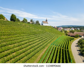 Aerial view of the vineyards with the white Bergkirche St. Nikolaus on the hill top in Rheinau, Switzerland
