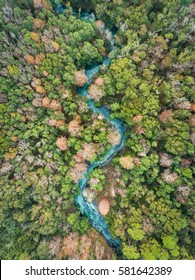 Aerial view of the Weeki Wachi River in Florida