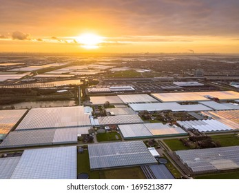 Aerial view of Westland or glass city Greenhouse horticulture area in the Netherlands. One of the biggest food production areas in the world an a huge engine of the dutch economy.