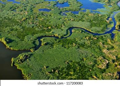 aerial view of wetland