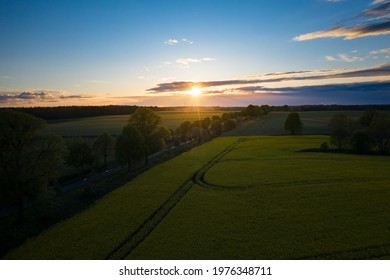 aerial view of wheat fields, agricultural land. the drone's flight over agricultural land in the evening at sunset.