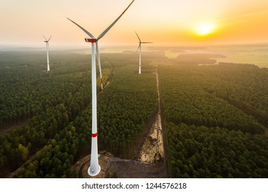 Aerial view of a wind farm in the forest at sunrise