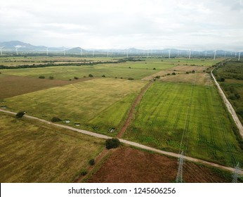 Aerial view of a wind turbines in rice fields plantation  in central Panama