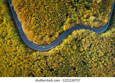 Aerial view of winding road  through Pezinska baba forest in autumn colors, Slovakia