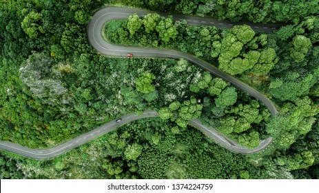 Aerial view of winding road trough the dense woods on the high mountain in Encumeada, Ribeira Brava, Madeira island.