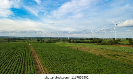 Aerial view of Windmills for electric power production at Huai Bong, Dan Khun Thot district, Nakhon Ratchasima. Large wind turbines were surrounded by corn field, Potato field and sugarcane field