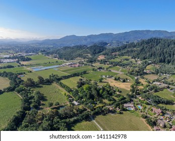 Aerial view of wine vineyard in Napa Valley during summer season. Napa County, in California's Wine Country, part of the North Bay region of the San Francisco Bay Area. Vineyards landscape.