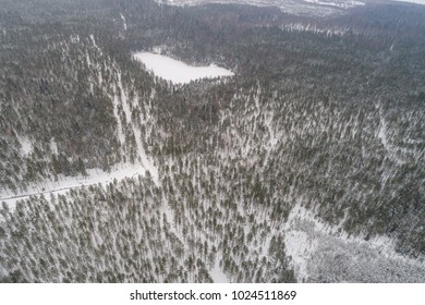 Aerial view of winter forest covered with snow.