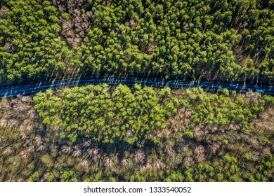 Aerial view of wonderful multicolored forest with road, Poland
