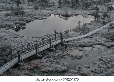 Aerial view of wooden path, road in swamp on early winter morning with trees and grass covered in frost. Kemeri national park sunrise, Latvia.