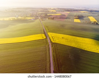 Aerial view of yellow colza and green corn and distant village at sunset