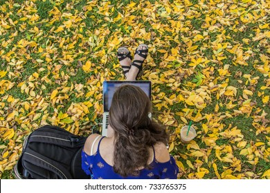 Aerial view of a young college student dressed in blue shirt is studying outdoor with beautiful fall foliage