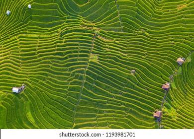 Imágenes Fotos De Stock Y Vectores Sobre Mermelada Terraza