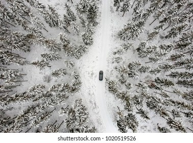 Aerial winter view for forest and the car