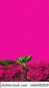 Pink Aesthetic Wallpaper Images Stock Photos Vectors Shutterstock