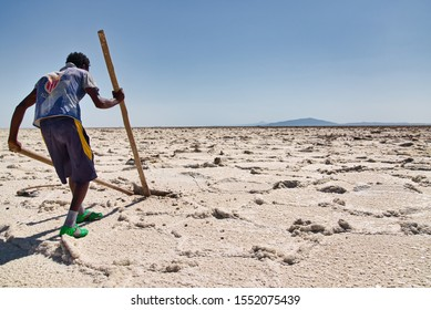 Afar Region, Ethiopia - January 03, 2019: Local man working in a salt mine trying to get out salt from the ground in the desert, in Afar Region, Ethiopia.