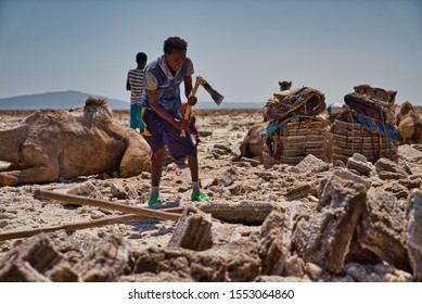 Afar Region, Ethiopia - January 03, 2019: Local man working in a salt mine trying to get out salt from the rocks in the desert with the ax, in Afar Region, Ethiopia.
