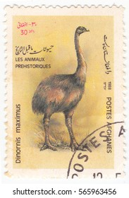 """AFGHANISTAN - CIRCA 1988: A stamp printed in Afghanistan shows moa (Dinonis maximus), series of images of """"Extinct dinosaurs prehistoric animals"""", circa 1988"""