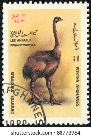 AFGHANISTAN - CIRCA 1988: A stamp printed in AFGHANISTAN shows Dinornis maximus, series, circa 1988
