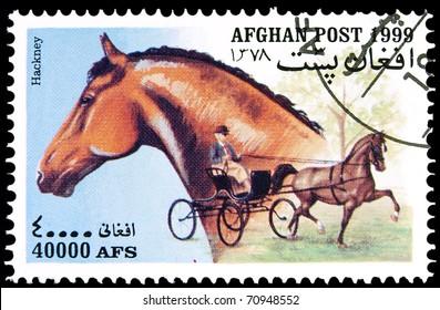 AFGHANISTAN - CIRCA 1999: A stamp printed in Afghanistan showing Hackney horse, circa 1999