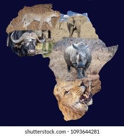 Afircan continent and the Big 5