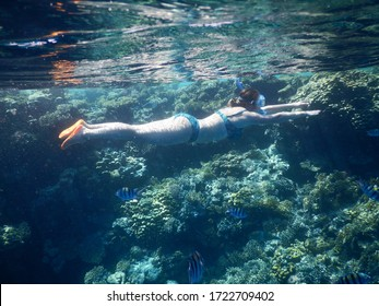 Africa, Egypt - September 2019: Coral reef in the Red Sea. girl swims with a mask and snorkel.