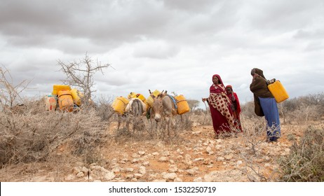 Africa, Kenya, Kenyan-Somali border -    A group of Kenyan women carry water on their backs and donkeys to their homes. The nearest water well is about 6 kilometers away. - ‎‎October ‎16, ‎2019,