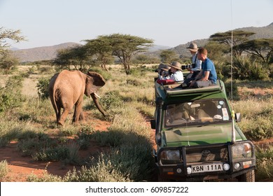 Africa, Kenya, Samburu National Reserve. Elephants in Savannah.(Loxodonta africana). Tourists photographing. 2016-08-04