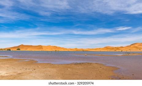 Africa, a lake in Erg Chebbi Dunes in Morocco, Sahara Desert.