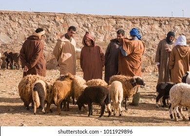 AFRICA, MOROCCO, REGION GUELMIM-OUED NOUN, SIDI IFNI PROVENCE - CIRCA FEB 2006 - Sheep at the Weekly animal market at Guelmim