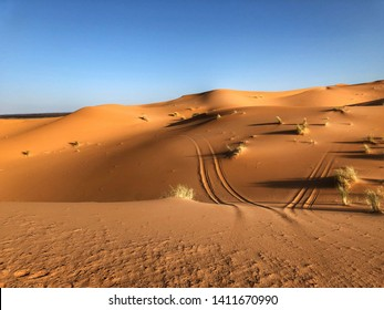 Africa, Morocco - Sahara Desert - Dunes and tracks of ATV.  Sunrise over desert  - Image