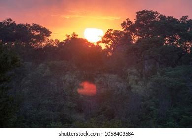 Africa Savanna Sunrise