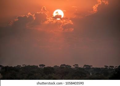 Africa Savanna Sunset