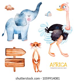 Africa watercolor set.Safari collection with ostrich,elephant,meercat,wooden sign,stones.Watercolor cute animals.Perfect for wallpaper,print,packaging,invitations,Baby shower,patterns,travel,logos etc