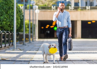 African American black young businessman walking and playing with his labrador dog at his free time in the office. concept of love for animals