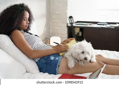 African american college student doing homework in bed with dog on legs. Woman preparing school test in bedroom with pet.