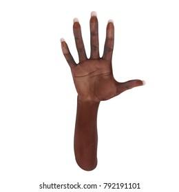 African American Female Hand on white. 3D illustration